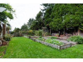 Photo 20: 12701 17A AVENUE in Surrey: Crescent Bch Ocean Pk. House for sale (South Surrey White Rock)  : MLS®# R2012208