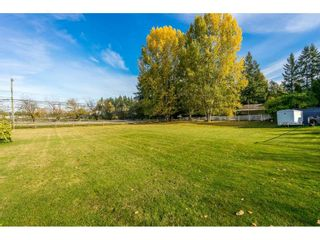 """Photo 18: 4772 238 Street in Langley: Salmon River House for sale in """"Salmon River"""" : MLS®# R2417126"""
