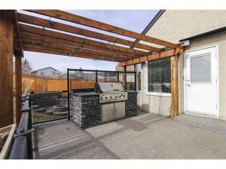 Photo 31: 25 HARVEST GLEN Court NE in Calgary: Harvest Hills House for sale : MLS®# C3650291