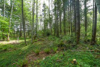 Photo 46: 7353 N Island Hwy in : CV Merville Black Creek House for sale (Comox Valley)  : MLS®# 875421
