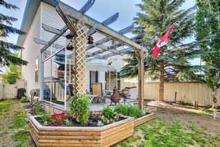 Photo 40: 131 Bridlewood Circle SW in Calgary: Bridlewood Detached for sale : MLS®# A1126092