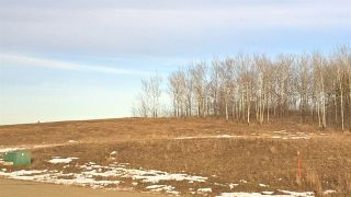 Photo 5: 56 25527 TWP RD 511A Road: Rural Parkland County Rural Land/Vacant Lot for sale : MLS®# E4235771