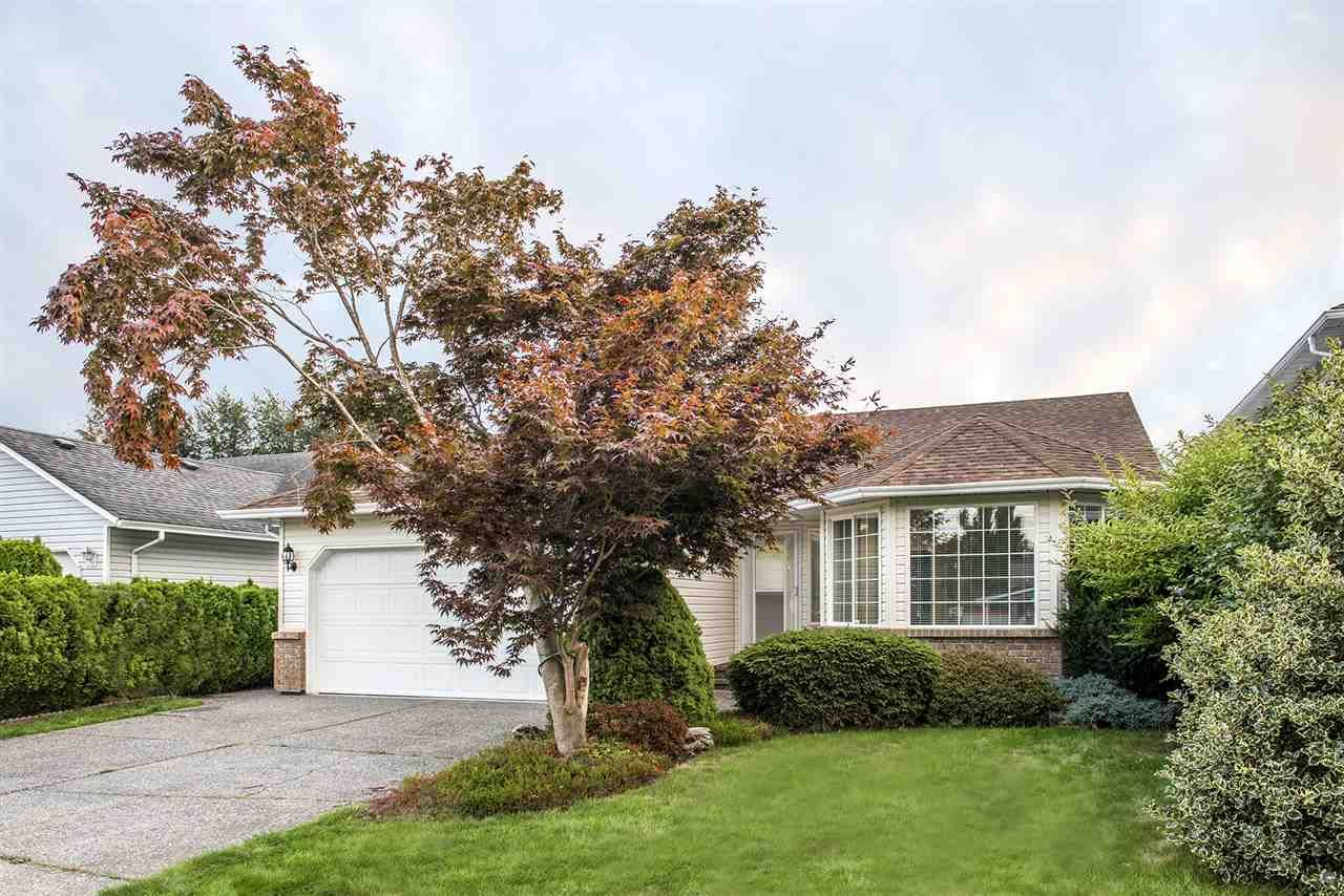 Main Photo: 45428 Spruce Dr. in Chilliwack: Sardis West Vedder Rd House for rent