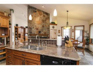 Photo 14: 322 Lakeside Green Place: Chestermere House for sale : MLS®# C4001857