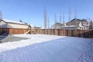 Photo 34: 944 CRANSTON Drive SE in Calgary: Cranston House for sale : MLS®# C4145156