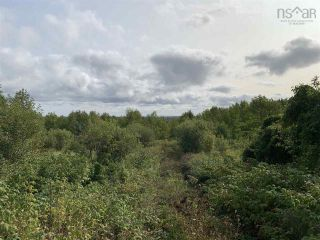 Photo 1: Lot Dan Fraser Road in Greenhill: 108-Rural Pictou County Vacant Land for sale (Northern Region)  : MLS®# 202120254