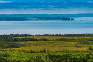 Photo 4: Woods Mountain Road in Parrsboro: 102S-South Of Hwy 104, Parrsboro and area Vacant Land for sale (Northern Region)  : MLS®# 202107896