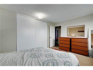 Photo 13: 80 MACEWAN PARK Link NW in Calgary: MacEwan Glen House for sale : MLS®# C4107280