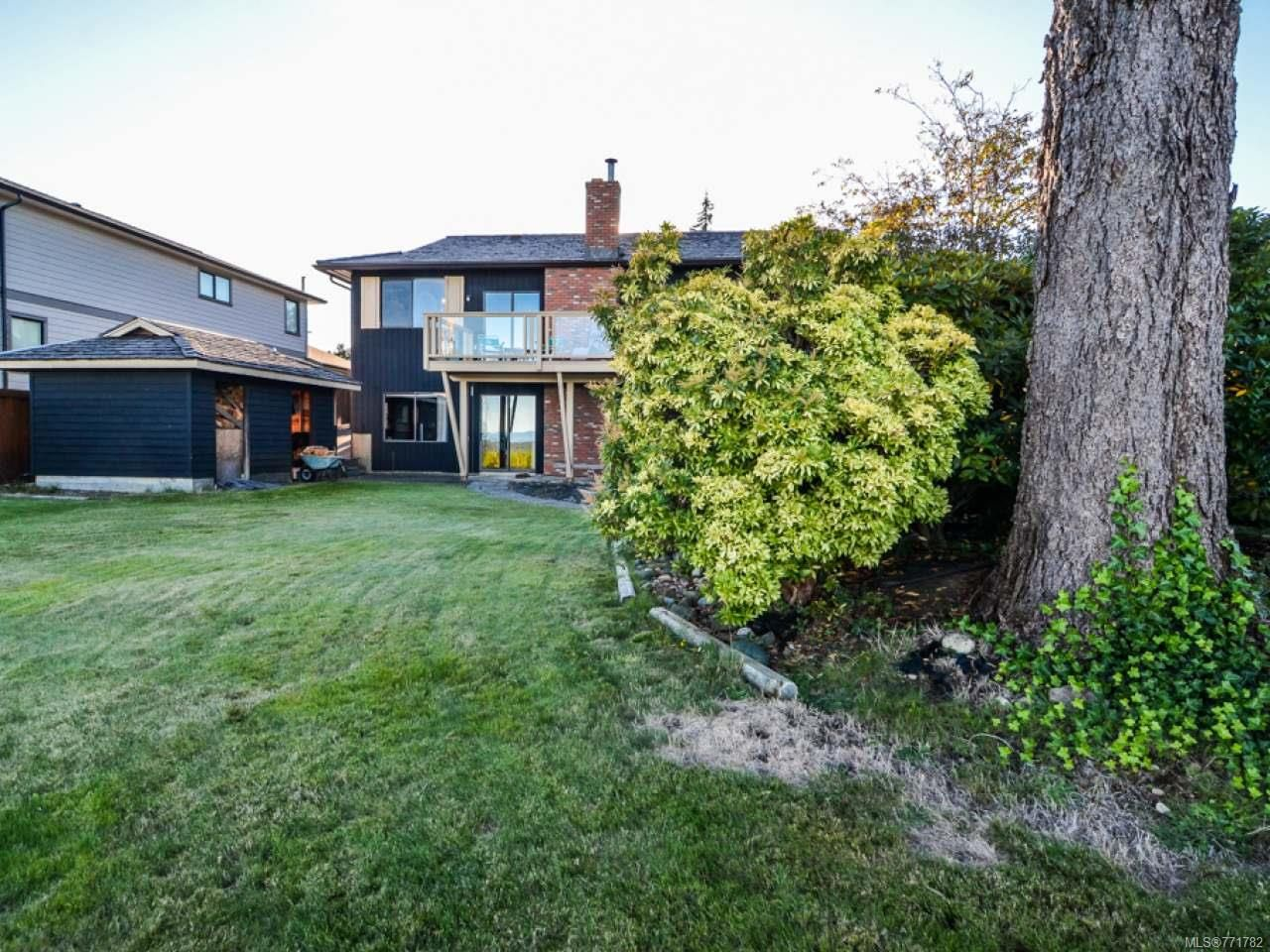 Photo 47: Photos: 451 S McLean St in CAMPBELL RIVER: CR Campbell River Central House for sale (Campbell River)  : MLS®# 771782