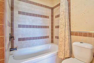 Photo 30: 8313 158 Avenue in Edmonton: Zone 28 House for sale : MLS®# E4240558