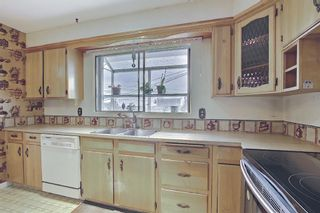 Photo 16: 227 Glamorgan Place SW in Calgary: Glamorgan Detached for sale : MLS®# A1118263
