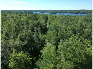 Photo 23: 1775 Trout Lake Road in New Albany: 400-Annapolis County Residential for sale (Annapolis Valley)  : MLS®# 202013496