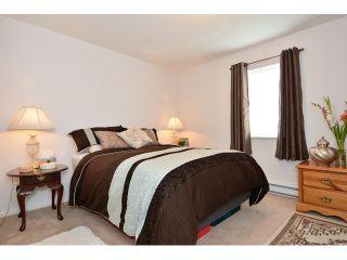 "Photo 20: 952 STEVENS Street: White Rock House for sale in ""White Rock Hillside"" (South Surrey White Rock)  : MLS®# F1440900"