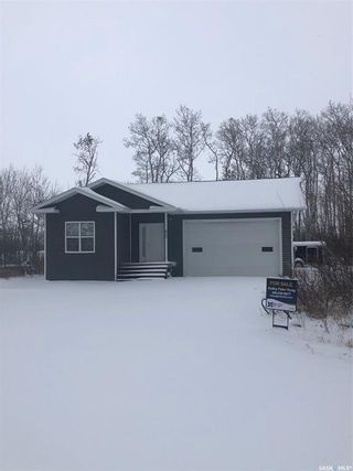 Photo 1: 805 Potter Place in Good Spirit Lake: Residential for sale : MLS®# SK833317
