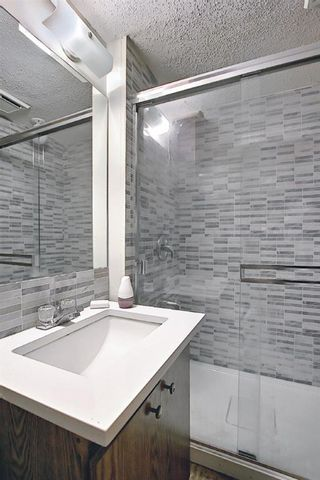 Photo 17: 4259 49 Street NE in Calgary: Whitehorn Detached for sale : MLS®# A1131311