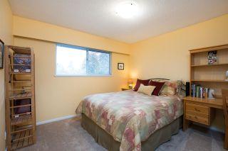 Photo 23: 5617 45 Avenue in Delta: Delta Manor House for sale (Ladner)  : MLS®# R2541808