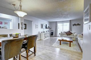 Photo 7: 8 6827 Centre Street NW in Calgary: Huntington Hills Apartment for sale : MLS®# A1133167