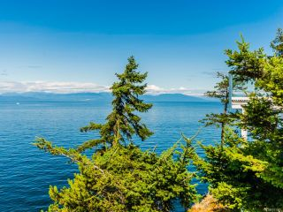 Photo 55: 4914 Fillinger Cres in NANAIMO: Na North Nanaimo House for sale (Nanaimo)  : MLS®# 831882
