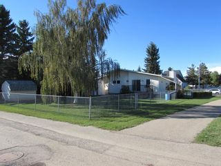 Photo 29: 1433 Idaho Street: Carstairs Detached for sale : MLS®# A1147289