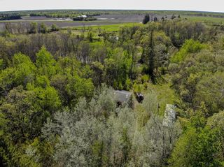 Photo 4: 46098 Whitemouth River Road East in Hadashville: R18 Residential for sale : MLS®# 202113243