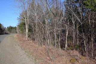 Photo 2: Lot Ridge Road in Hillgrove: 401-Digby County Vacant Land for sale (Annapolis Valley)  : MLS®# 202108522