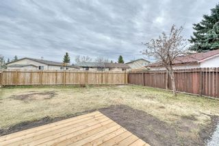 Photo 50: 355 Whitman Place NE in Calgary: Whitehorn Detached for sale : MLS®# A1046651