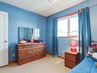 Photo 30: 407 49 Avenue SW in Calgary: Elboya Detached for sale : MLS®# A1060455