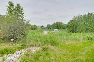 Photo 45: 1286 RUTHERFORD Road in Edmonton: Zone 55 House for sale : MLS®# E4255582