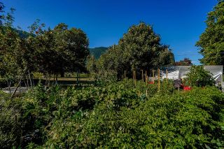 Photo 39: 39039 NORTH PARALLEL Road in Abbotsford: Sumas Prairie House for sale : MLS®# R2602841