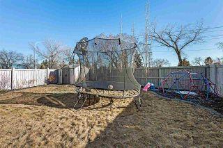 Photo 35: 2037 ROCHESTER Avenue in Edmonton: Zone 27 House for sale : MLS®# E4231401
