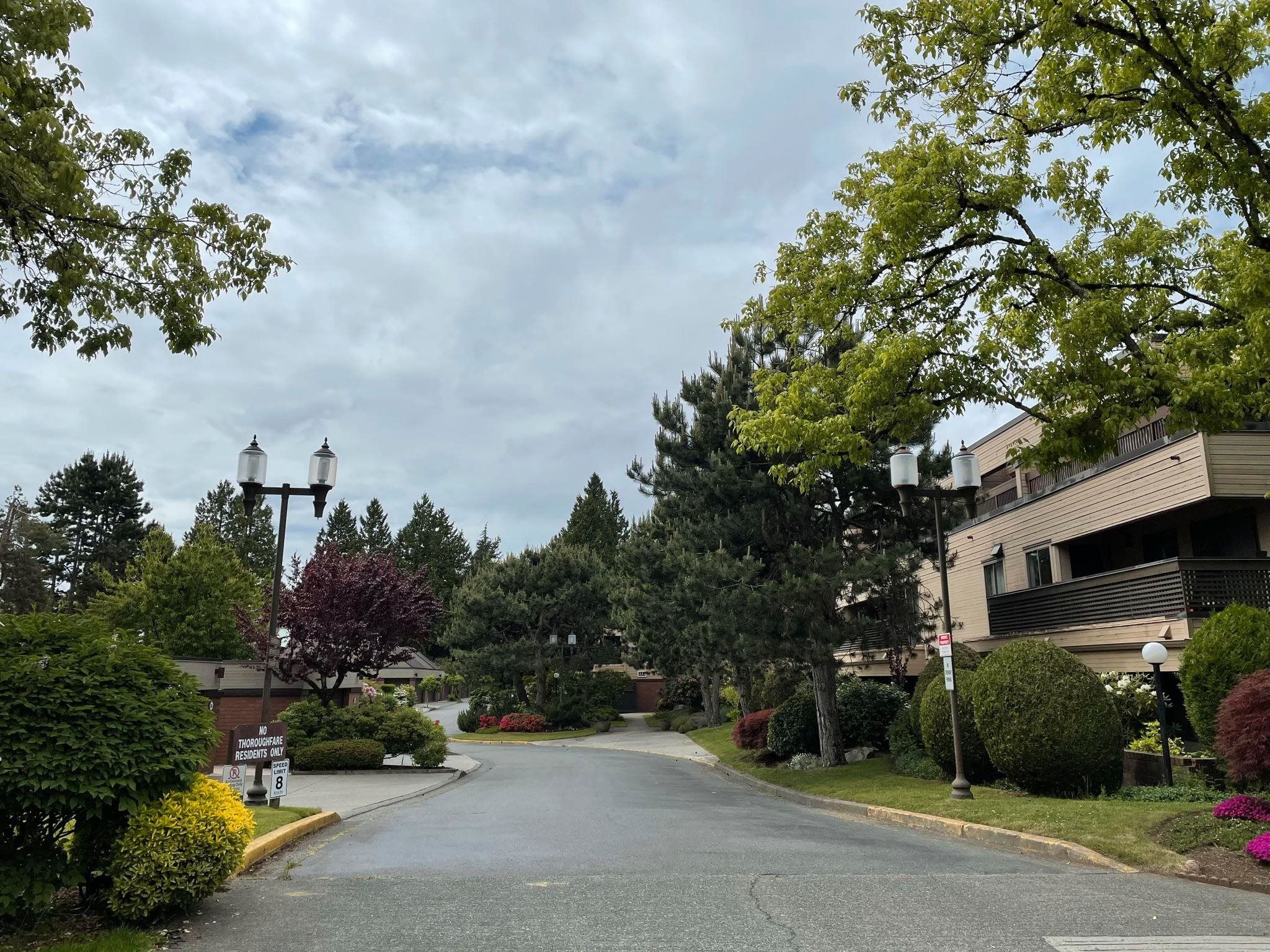 """Main Photo: 409 333 WETHERSFIELD Drive in Vancouver: South Cambie Condo for sale in """"LANGARA COURT"""" (Vancouver West)  : MLS®# R2613843"""