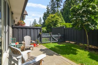 """Photo 21: 42 4967 220 Street in Langley: Murrayville Townhouse for sale in """"Winchester Estates"""" : MLS®# R2592312"""