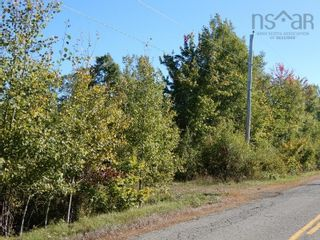 Photo 1: 40+/- acres Old Pictou Road in Hedgeville: 108-Rural Pictou County Vacant Land for sale (Northern Region)  : MLS®# 202125401