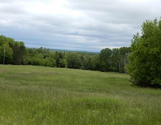 Photo 1: River John Road in Scotch Hill: 108-Rural Pictou County Vacant Land for sale (Northern Region)  : MLS®# 202115411
