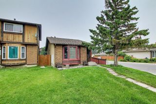 Photo 1: 4259 49 Street NE in Calgary: Whitehorn Detached for sale : MLS®# A1131311