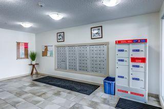 Photo 3: 204 5816 MULLEN Place in Edmonton: Zone 14 Condo for sale : MLS®# E4262303