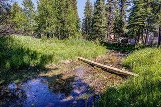 Photo 19: 193 200 4th Avenue SW: Sundre Residential Land for sale : MLS®# A1117658