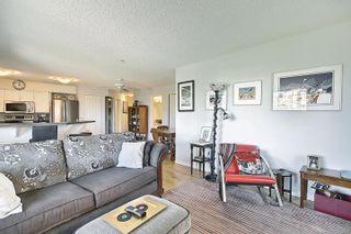 Photo 20: 302 8715 82 Avenue in Edmonton: Zone 17 Condo for sale : MLS®# E4248630