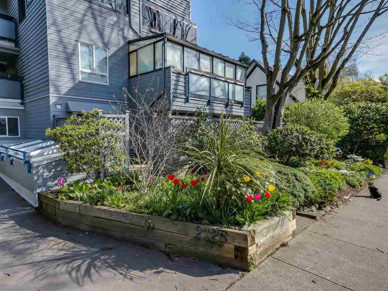 "Main Photo: 115 2125 YORK Avenue in Vancouver: Kitsilano Condo for sale in ""YORK GARDENS"" (Vancouver West)  : MLS®# R2054686"