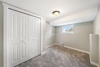 Photo 26: 28 Falton Mews NE in Calgary: Falconridge Detached for sale : MLS®# A1144383