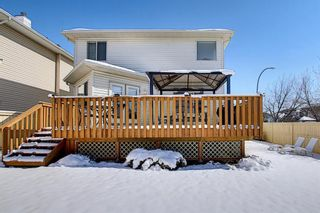 Photo 23: 777 Panorama Hills Drive NW in Calgary: Panorama Hills Detached for sale : MLS®# A1096936