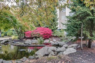 """Photo 20: # 206 3629 DEERCREST DR in North Vancouver: Roche Point Condo for sale in """"RavenWoods"""" : MLS®# V998599"""