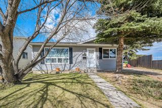 Main Photo: 127 Abingdon Place NE in Calgary: Abbeydale Detached for sale : MLS®# A1101472
