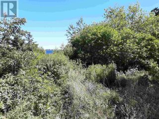 Photo 5: Lot Long Cove Road in Port Medway: Vacant Land for sale : MLS®# 202106718