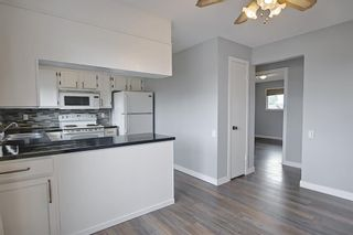 Photo 9: 155 Templevale Road NE in Calgary: Temple Detached for sale : MLS®# A1119165