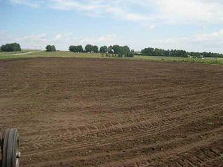 Photo 5: 380070 120 Street E: Rural Foothills M.D. Land for sale : MLS®# C3643386