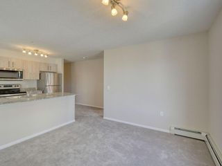 Photo 14: 4415 4641 128 Avenue NE in Calgary: Skyview Ranch Apartment for sale : MLS®# A1147508