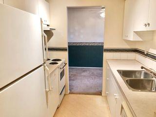 Photo 16: 304 647 1 Avenue NE in Calgary: Bridgeland/Riverside Apartment for sale : MLS®# A1061043