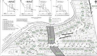 Photo 2: LOT 25 8250 NIXON Road in Chilliwack: Eastern Hillsides Land for sale : MLS®# R2259202