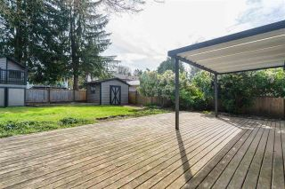 Photo 13: 21816 DONOVAN Avenue in Maple Ridge: West Central House for sale : MLS®# R2560763
